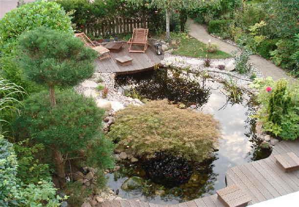 schwimmteich pflanzen schwimmteich bepflanzen. Black Bedroom Furniture Sets. Home Design Ideas